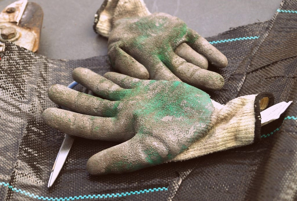 gardening gloves japanese knotweed removal uk - london cardiff bristol